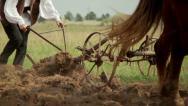 Romanian farmer 1 Stock Footage