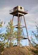 The thrown watchtower in a wood Stock Photos