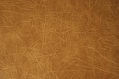 Stock Photo of leather brown upholstery