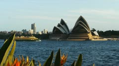 Sydney opera house with flowers and ferry Stock Footage