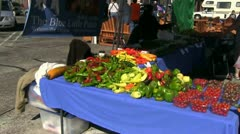 Astoria, Oregon farmers market - stock footage