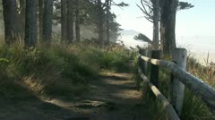 Canon Beach, Oregon Coast Stock Footage