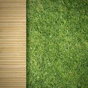 wood and grass - stock illustration