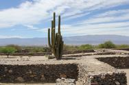 Stock Photo of Views of RUINAS DE QUILMES whit cactus and sky - Argentina
