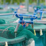 Stock Photo of agriculture aquaculture water system farm