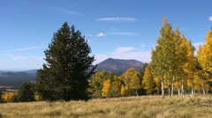 Fall Colors Mountains Stock Footage