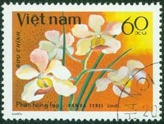 Stamp printed in Vietnam shows orchid Vanda Teres Stock Photos