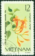 stamp printed in VIETNAM shows image of a Bignoniaceae, venusta - stock photo