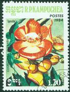 Stamp printed in Cambodia (Kampuchea) shows a flower Stock Photos
