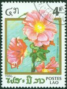 Stamp printed in the Laos, depicts a flower Althaea rosea Stock Photos