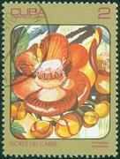 Stamp printed in CUBA shows a Couroupita guianensis Stock Photos