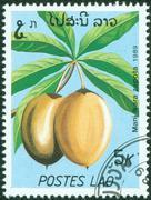 stamp printed in Laos shows Manilkara zapota or Sapodilla - stock photo