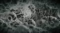Electron Microscope View At The Alien Virus. Stock Footage