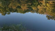 HD Stock Footage - 1080p - Fall tree reflection, ripple in water Stock Footage