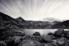 black and white landscape - stock photo