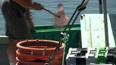 Quickly unloading catch of the day; 2 Stock Footage