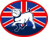 Stock Illustration of proud english bulldog marching with british flag