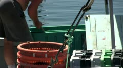 Unloading flounder; 5 Stock Footage