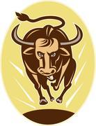 raging texas longhorn bull charging - stock illustration