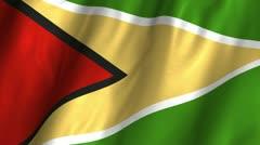 Guyana Waving Flag Stock Footage