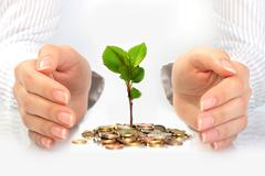 new life. business concept. - stock photo