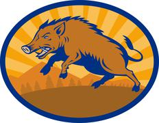 Wild boar pig razorback hog attacking Stock Illustration