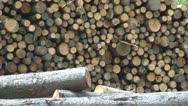 Wood, Stack of Wood for a Frosty Winter Stock Footage