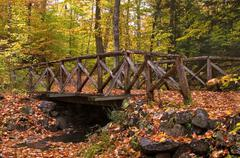 A wooden log bridge covered in leaves during autumn. Stock Photos