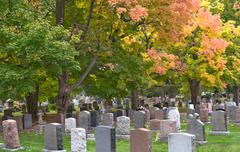 headstones in a cemetery in autumn. - stock photo