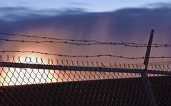 barbed wire life - stock photo