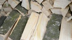 Wood pile Stock Footage