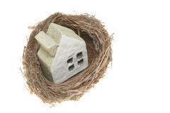 house model in bird nest - stock photo