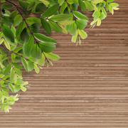 old grunge wood texture with leaves - stock illustration