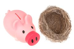 Stock Photo of bird nest and piggy bank