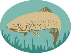 Spotted or speckled trout swimming Stock Illustration