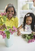 African American grandmother and granddaughter arranging flowers Stock Photos