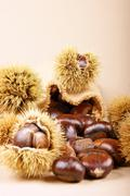 Sweet chestnuts Stock Photos