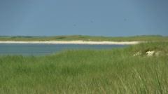 Monomoy island coastline; 3 Stock Footage