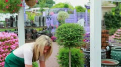 Woman working at the garden center Stock Footage