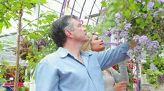 Couple standing looking at a plant in hanging basket Stock Footage