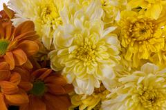 Stock Photo of bunch of flowers