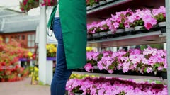 Woman standing at a flower shelf Stock Footage