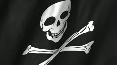 Jolly Roger Waving Flag Stock Footage