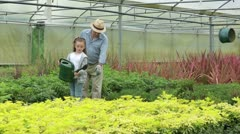 Little girl watering plants with her granddad - stock footage