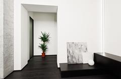 Modern minimalism style hall interior Stock Photos