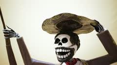Mexico Skull Stock Footage