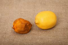 two fruit against canvas - bad and good lemons - stock photo