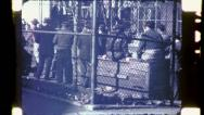 ITALIAN IMMIGRANTS Play Bocci Ball Game NYC 1940s (Vintage Film Home Movie) 4809 Stock Footage