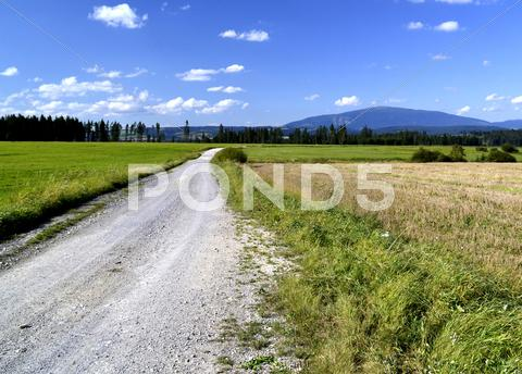 Stock photo of Field pathway