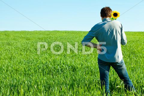 Stock photo of young man standing with a sunflower in the green field